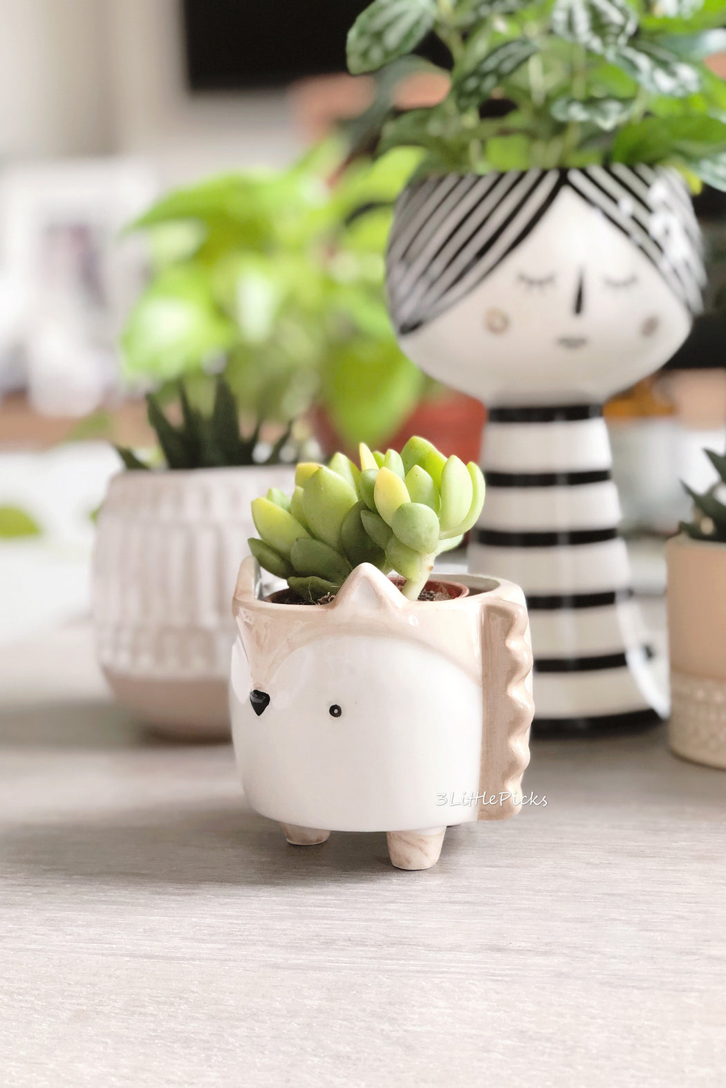 Hedgehog Mini Planter