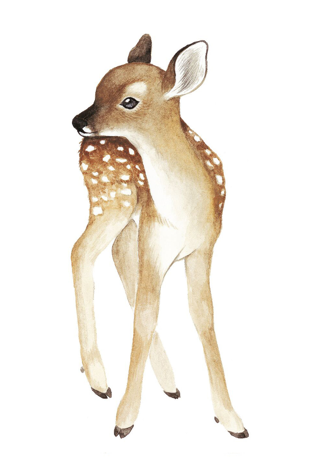 Fawn Vinyl Decal