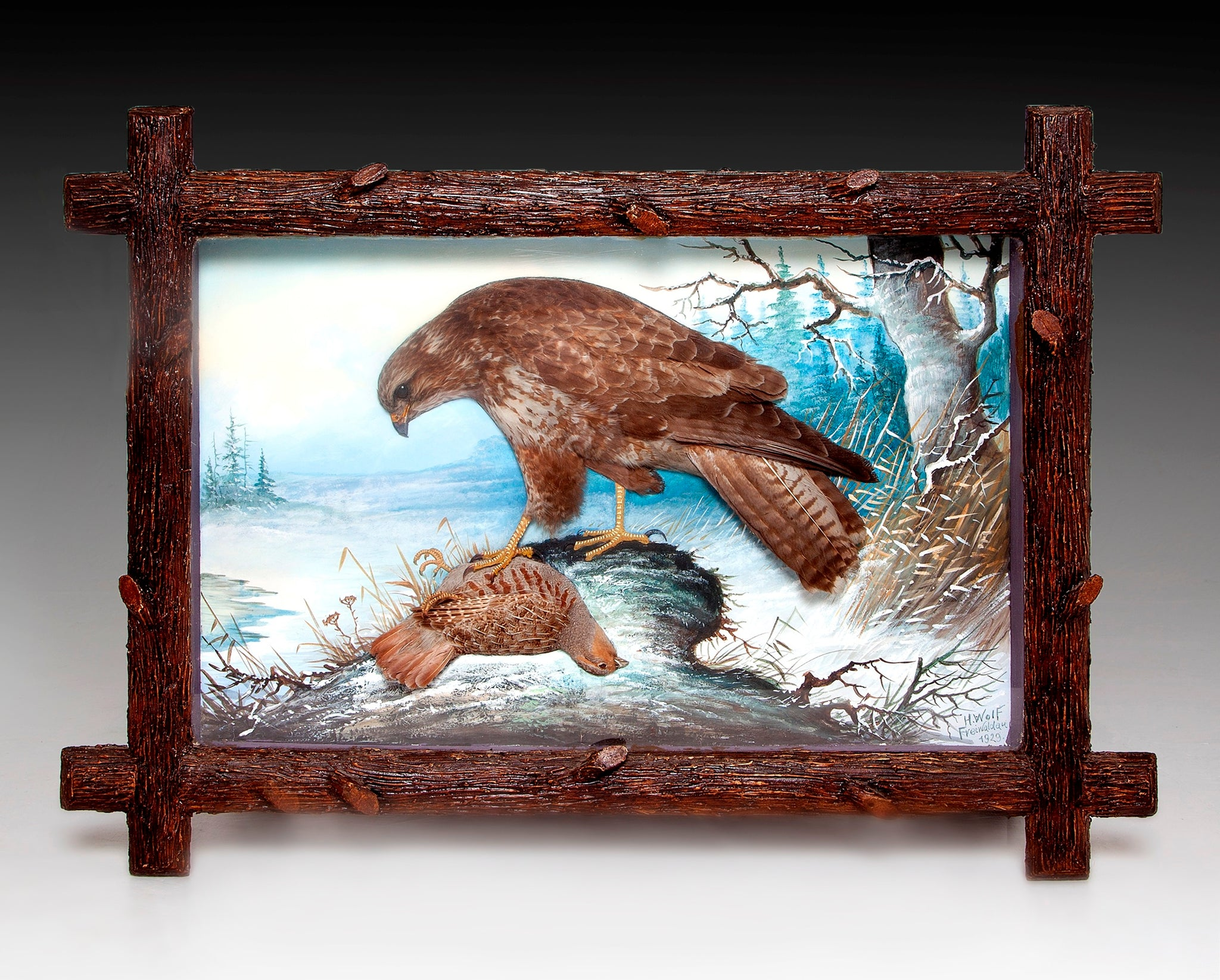 Framed Collection of Nine Taxidermy Dioramas of Birds