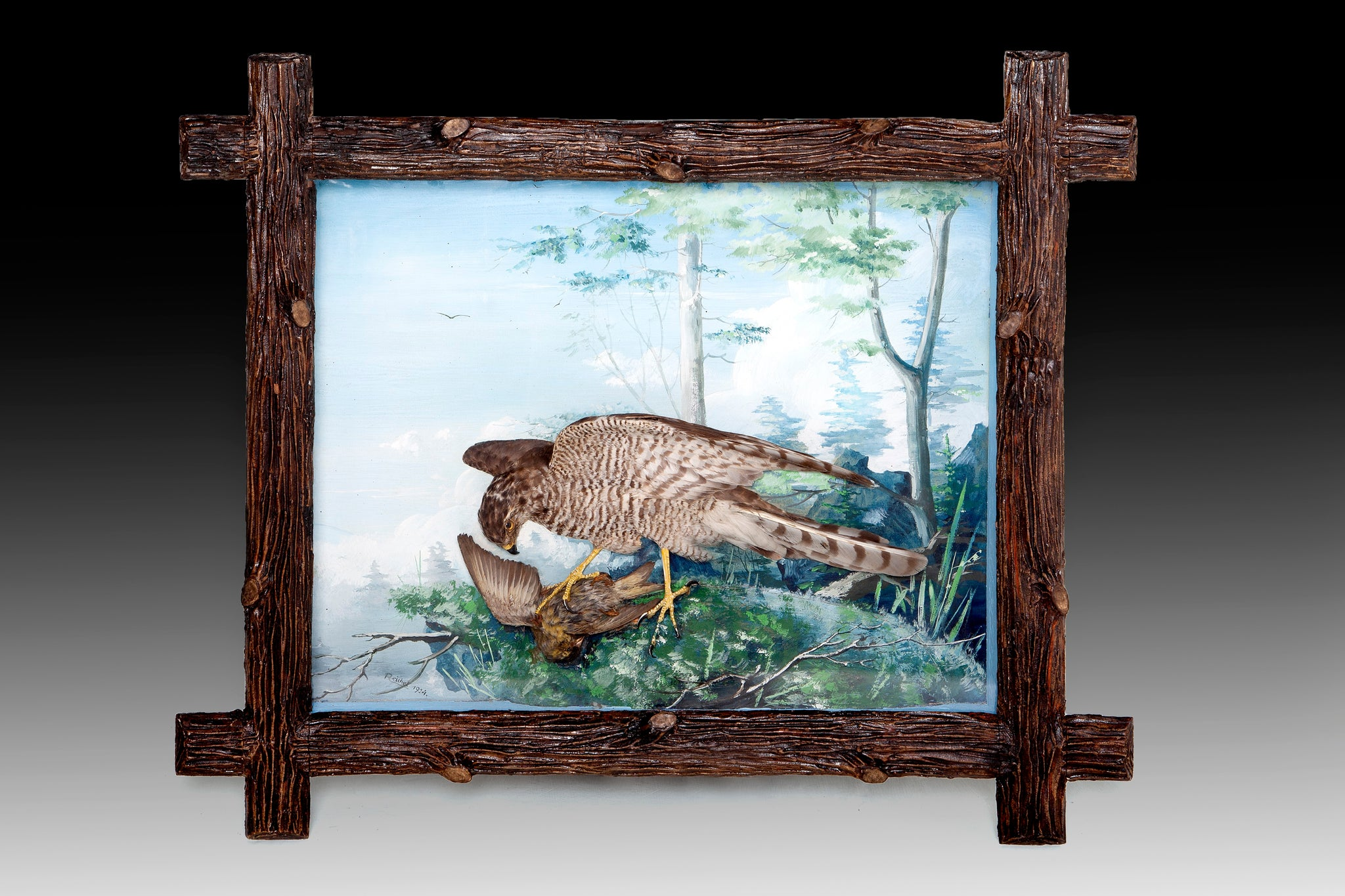 Framed Collection of 9 Taxidermy Dioramas of Birds