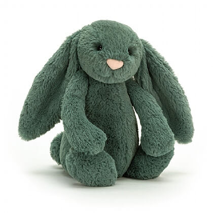 Jellycat Bunnies & Books