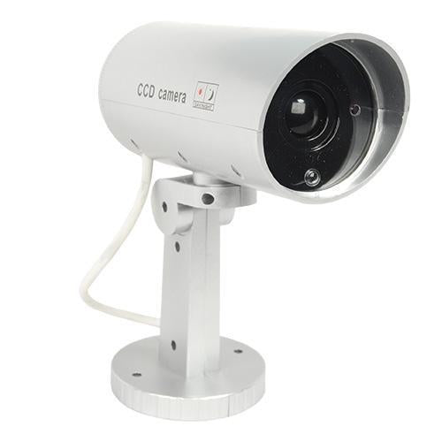 Indoor or outdoor motion activated dummy camera