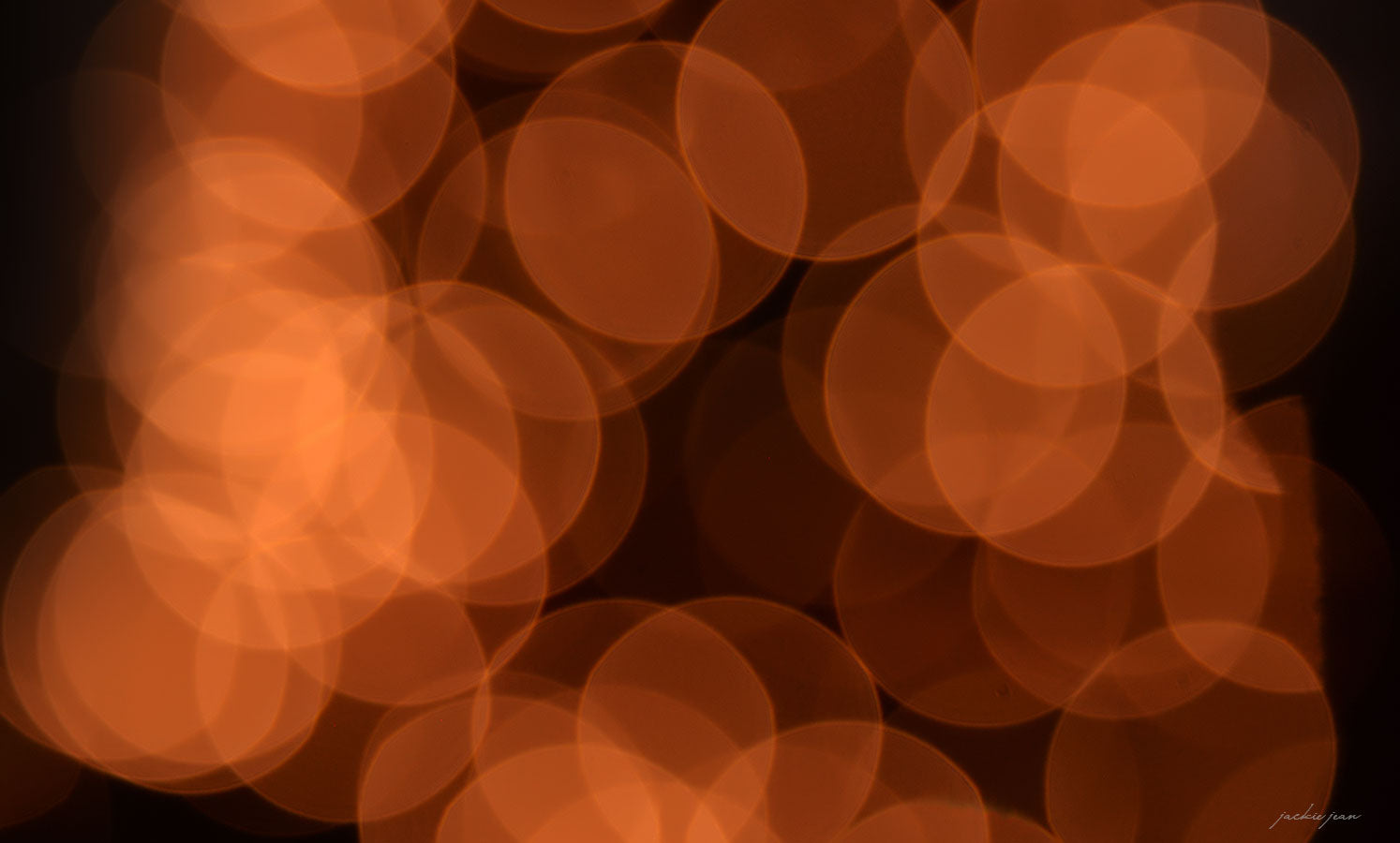 the bokeh effect and a free bokeh overlay shopjeanphotography com