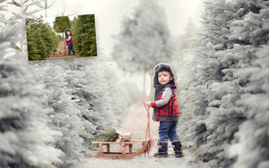 LR Winter Mix Photo FX Presets