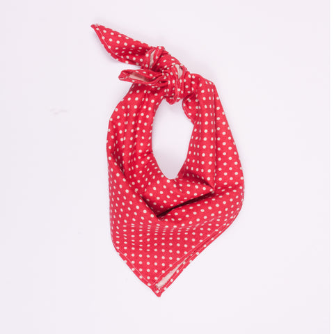 Neckerchief - Spot
