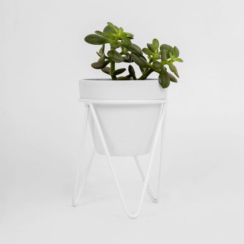 White Hair Pin Pot Stand - Large Tabletop