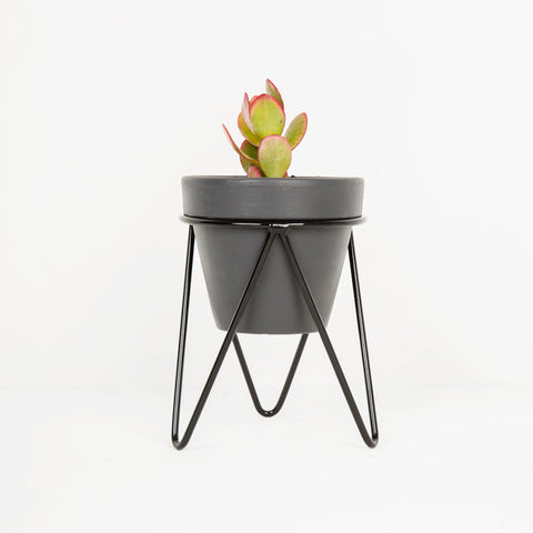 Black Hair Pin Pot Stand - Large Tabletop