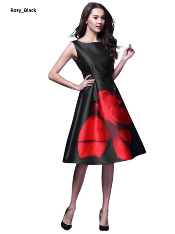 Image of Rosy Black Skater Dress