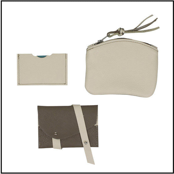Bicolor leather accessories (small purse and cards holder) on a white background