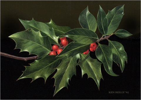 ------ Christmas Holly ------ Pack of 5 postcards