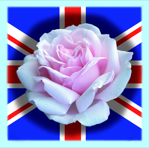 Ken Reilly - Union Jack - English Rose