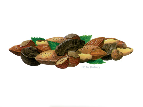 Ken Reilly Mixed Nuts Illustration for Cadbury's
