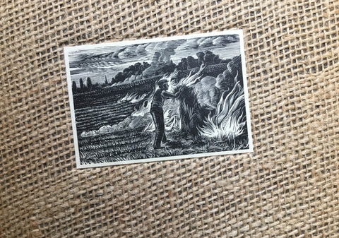 Stubble Burning - Whittington Press