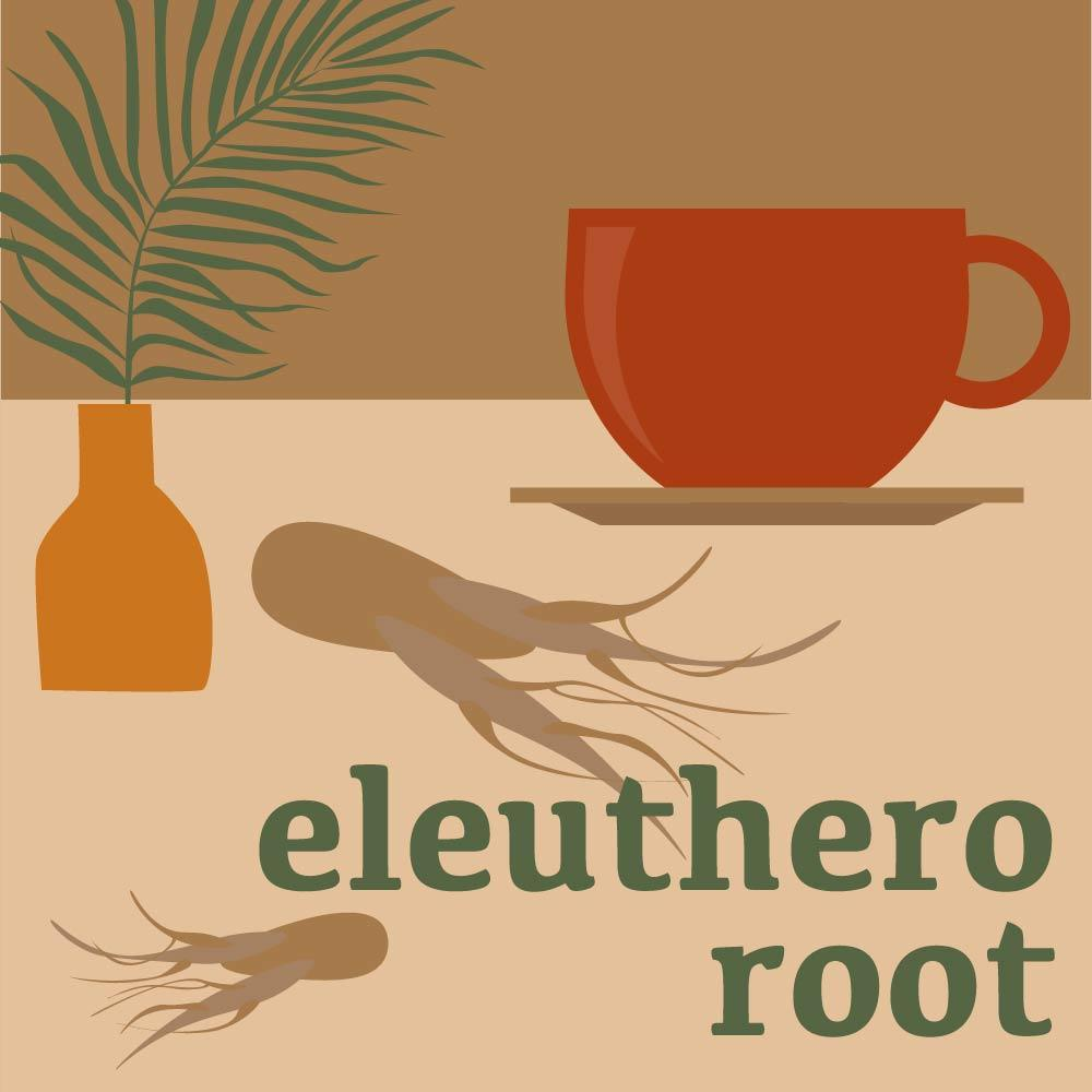 Eleuthero Root: Health Benefits and Usage (Siberian Ginseng)