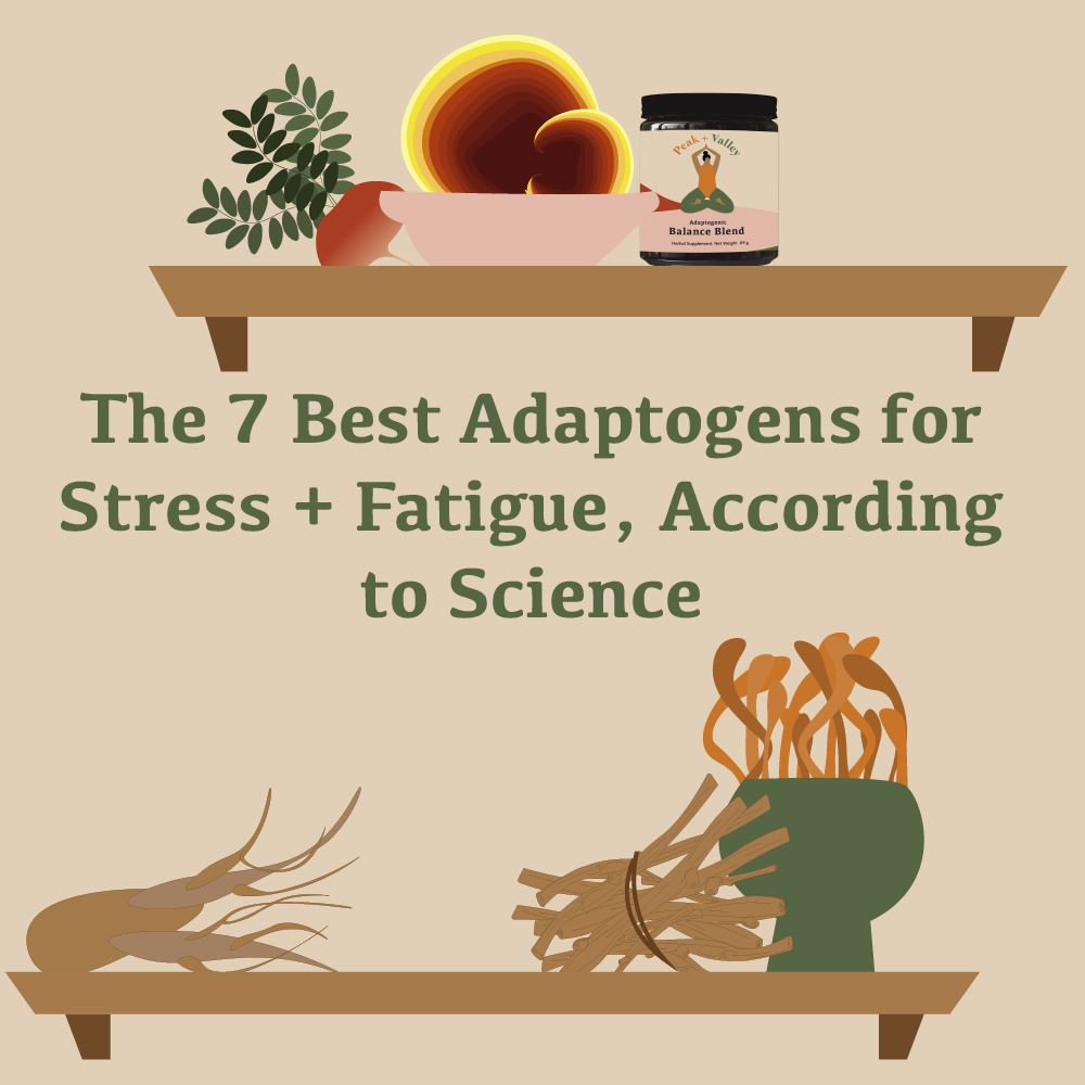 The 7 Best Adaptogens for Stress + Fatigue, According to Science