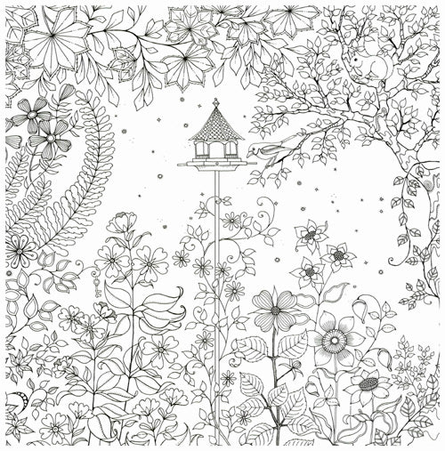 Secret Garden An Inky Treasure Hunt And Colouring