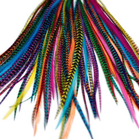 20x Discount  B-Grade Feathers - Dyed Brights