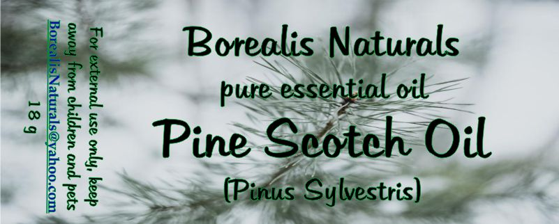 Essential Oil - Pine Scotch
