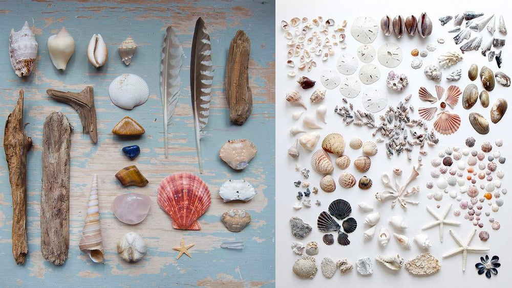 Beach treasures found on Pinterest