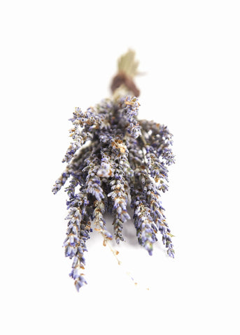 Bouquet of purple lavender stems by SoulMakes