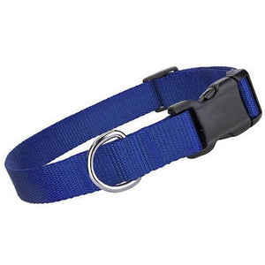 Solid Color Nylon Dog Collars