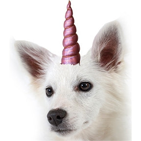 Unicorn Horn for Dogs or Cats