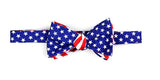 Bow Tie Stars and Bars
