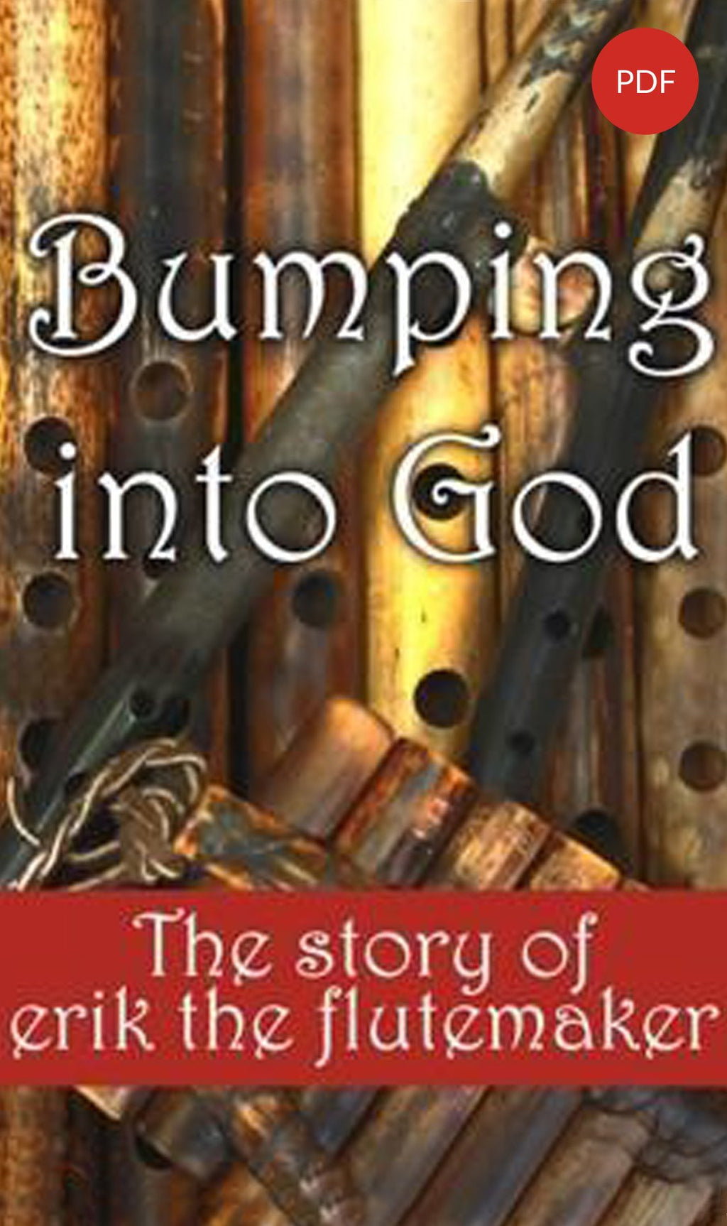 Bumping into God Book PDF