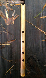 END BLOWN FLUTE Ice Age Pre-historic Bamboo Body