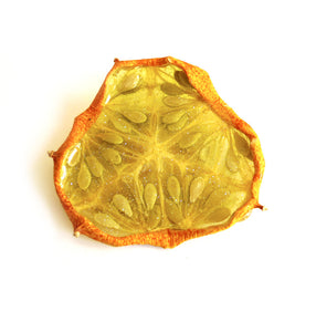 Kiwano Melon Pin
