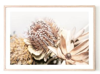 ART PRINT | Dried Bouquet 5 by Blackhaus Studios