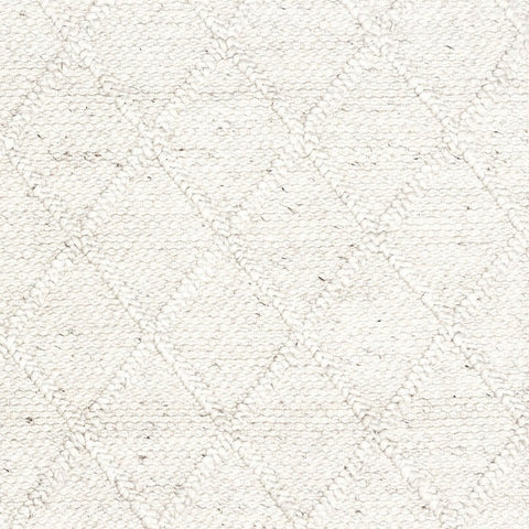 FLOOR RUG | cesar design in ivory by tribe home