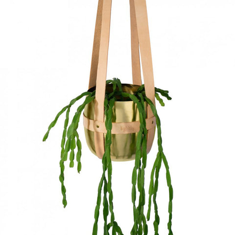 HANGING PLANTER | tan leather + brass by lightly