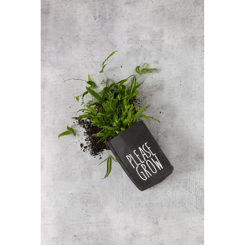 PLANTER | washable 'please grow' bag by zakkia