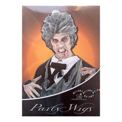 Silver Mad Scientist Wig