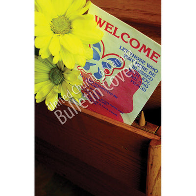 Bulletin: Welcome Daisies (Package of 50)