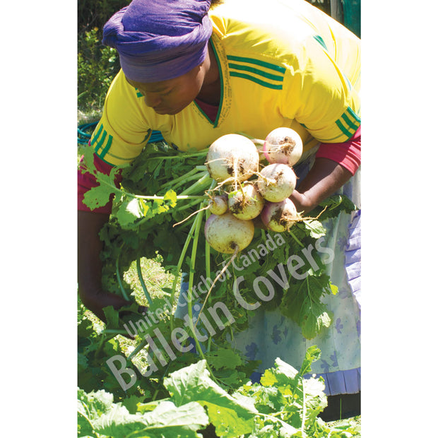 Bulletin: Picking Vegetables (Package of 50)