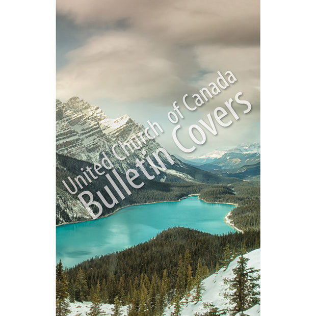 Bulletin: Peyto Lake (Package of 50)