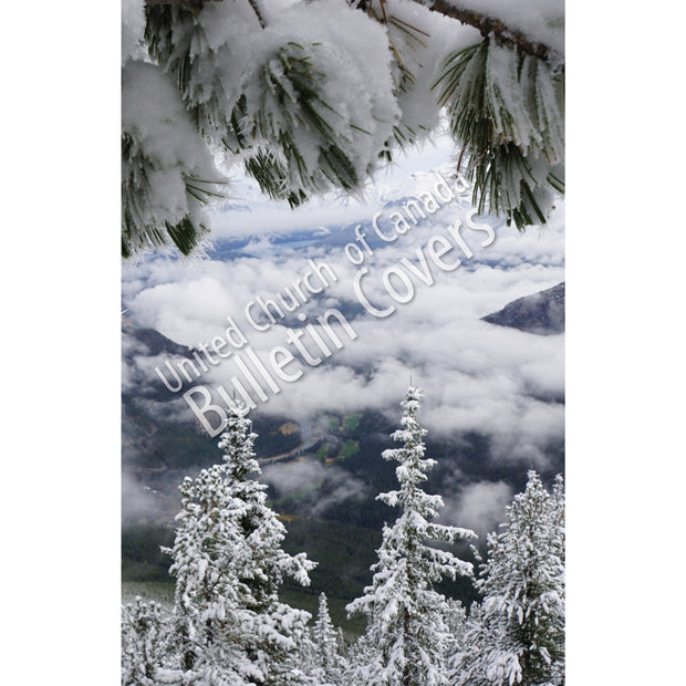Bulletin: Winter Splendour (Package of 50)