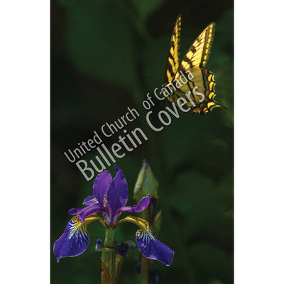 Bulletin: Iris and Butterfly (Package of 50)