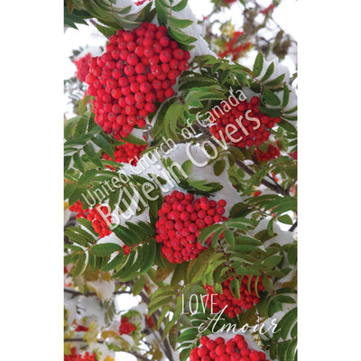 Bulletin: Mountain Ash Berries (Package of 50)