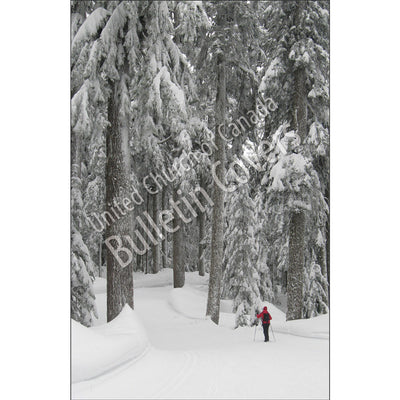Bulletin: Skiing Cypress Mountain (Package of 50)