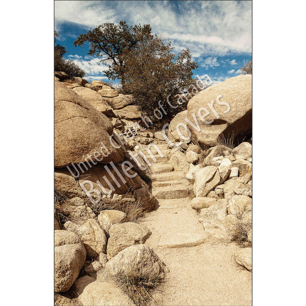Bulletin: Desert Steps (Package of 50)