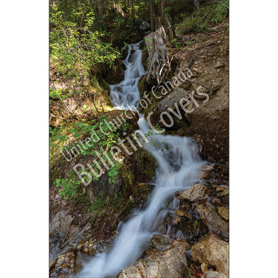 Bulletin: British Columbia Waterfall (Package of 50)