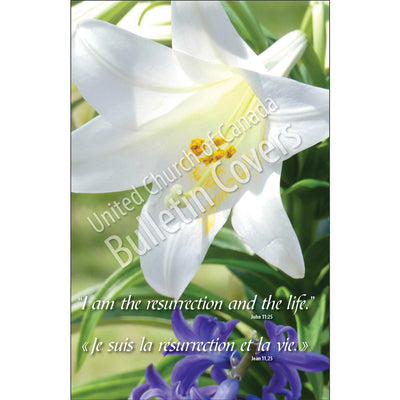 Bulletin: Easter Lily and Hyacinth (Package of 50)
