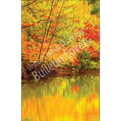 Bulletin: Fall Reflections (Package of 50)