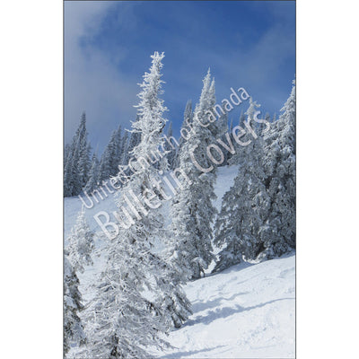 Bulletin: Snowy Mountainside (Package of 50)