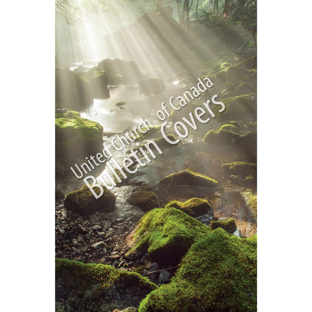 Special Occasion Bulletin: Light on Mossy Rocks (Package of 100)