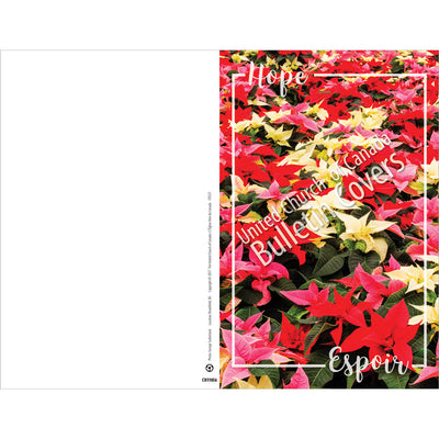 Special Occasion Bulletin: Hope: Poinsettias (Package of 100)