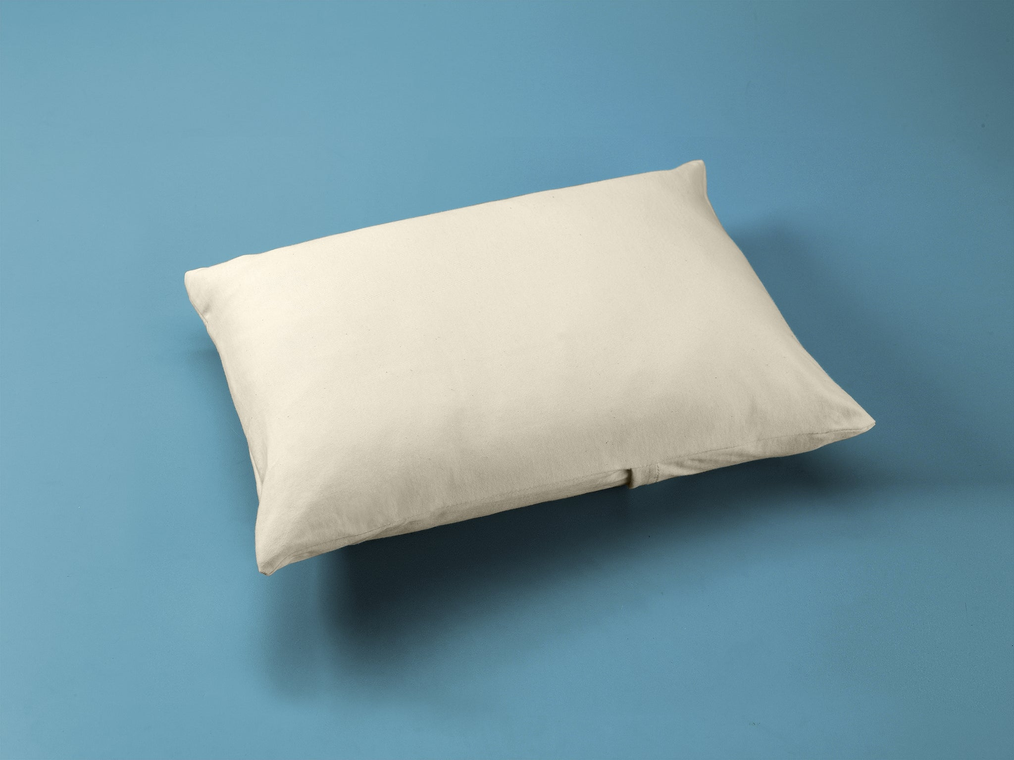 Organic Cotton Toddler Pillow Case